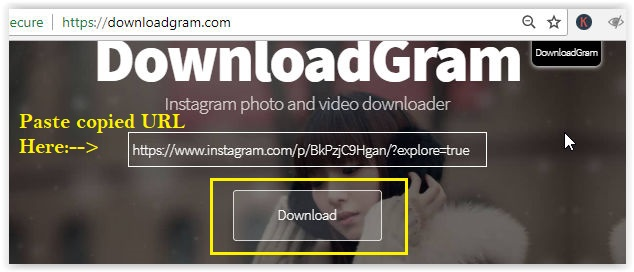 download instagram photos and videos online with downloadgram Instagram